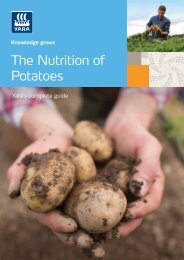 The Nutrition of Potatoes