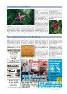 Lichtenberg_gesamt_260816 - Page 7
