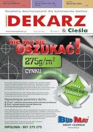 Fachowy Dekarz & Cieśla 2011-3