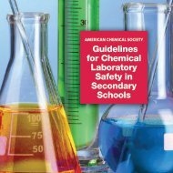 Guidelines for Chemical Laboratory Safety in Secondary Schools