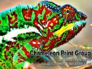 Commercial & Trade Printing Services - Chameleon Print Group