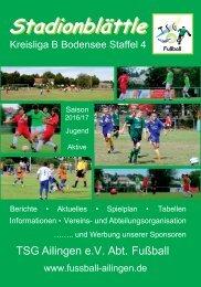 Stadionblättle 2016/2017