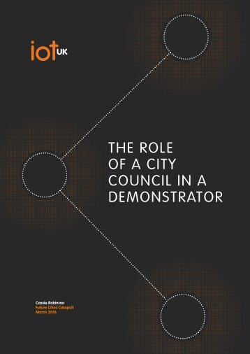 OF A CITY COUNCIL IN A DEMONSTRATOR