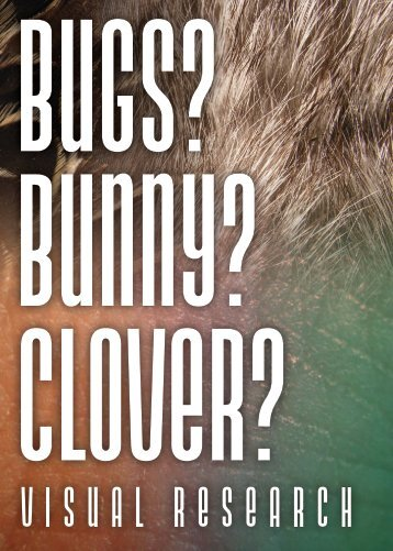 Who Are Bugs, Bunny And Clover?