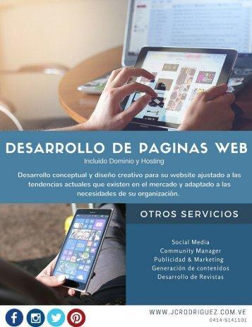 Flyer Desarrollo de paginas web