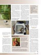 Bindung Mensch-Hund (1) - Seite 2
