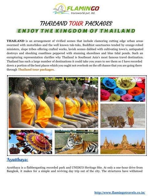 Enjoy the  Kingdom of Thailand tour packages with Flamingo