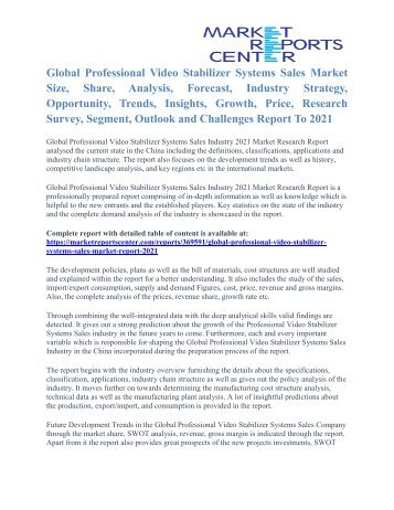 Professional Video Stabilizer Systems Market Size, Application Potential And Price Trends To 2021