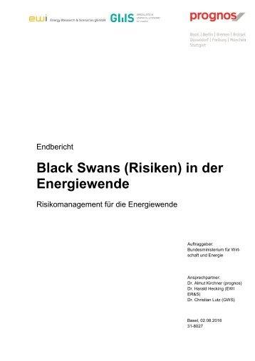 Black Swans (Risiken) in der Energiewende