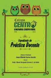 practica docente campo real 2016