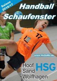 Handball Schaufenster 2016/17