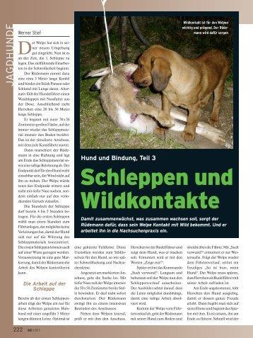 Bindung Mensch-Hund (3)