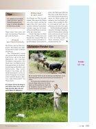 Bindung Mensch-Hund (3) - Seite 2
