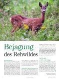 80 Zur Vollendung des 80. Lebensjahres - Tiroler Jägerverband - Seite 4