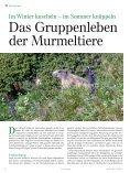 80 Zur Vollendung des 80. Lebensjahres - Tiroler Jägerverband - Seite 6