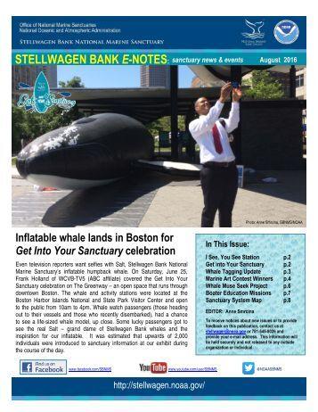STELLWAGEN BANK E-NOTES