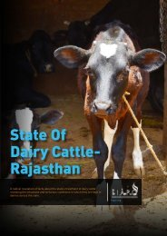 State Of Dairy Cattle- Rajasthan