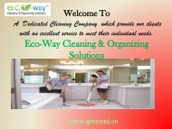 Eco Friendly Cleaning Services|Eco-Way Cleaning & Organizing Solutions