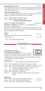 ceska_kultura - Page 2