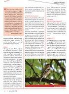 Fuori dal comune 8 - Page 6