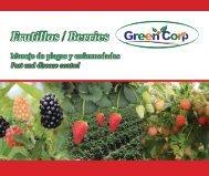 folleto frutillas-Actualizado.compressed