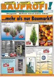 Bauprofi_KW36_online