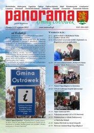 2012_panorama_gminy_ostrówek_nr_1_(1)