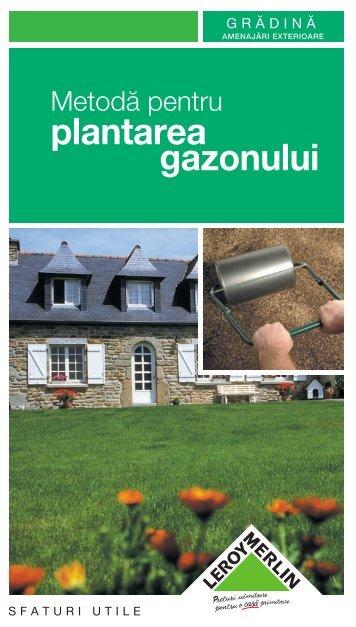 plantare-gazon_file_28