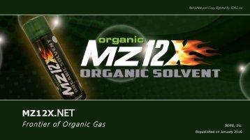 Profile of MZ12X English (1)
