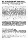 Giftpflanzen - Beschauen, nicht kauen - Seite 6