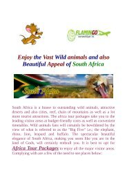 Enjoy the Vast Wild animals and also Beautiful Appeal of africa tour packages