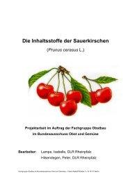 Die Inhaltsstoffe der Sauerkirschen.pdf - Obstbau - Rheinland-Pfalz