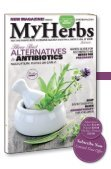 My Herbs Magazine 2, sample - Page 4
