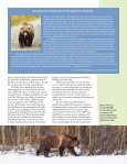 Grizzlies in the Crosshairs - Page 7