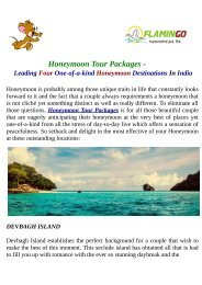 Best Visit Honeymoon Tour Packages By Flamingo Travels