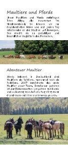 Mit Maultieren und Pferden auf dem Weg - Seite 3