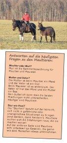 Mit Maultieren und Pferden auf dem Weg - Seite 5