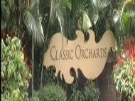 classic orchards