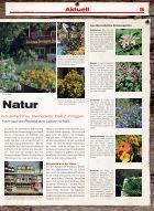 Allalin News Nr.15 - Seite 5