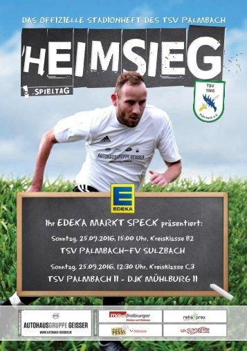 TSV Palmbach Heft-3