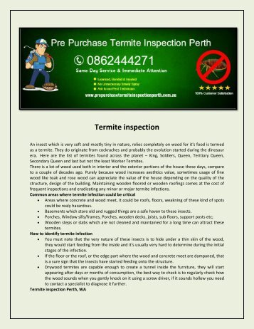 Pre Purchase Termite Inspection Perth1