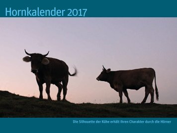 Hornkalender 2017 (komprimiert)