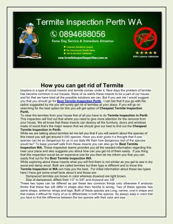 Termite Inspection Perth WA