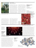 ART&ANTIQUE Hofburg Vienna 2016 - Seite 7