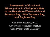 Assessment of E.coli and Microcystins in ... - State of Michigan