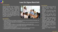 Lean Six Sigma Black Belt Brochure (1)