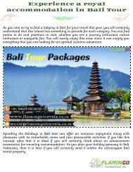 Enjoy a royal accommodation in Bali Tour Packages |Flamingo