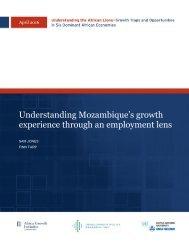 Understanding Mozambique's growth experience through an employment lens