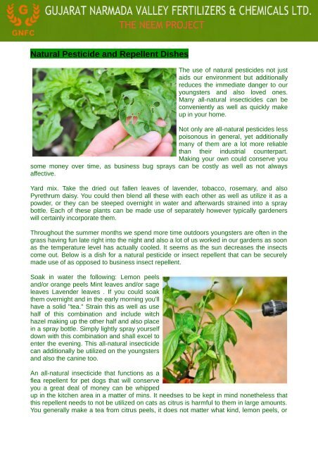 Neem Oil Is Biodegradable And Also Extremely Reduced Poisoning
