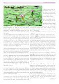 evangelischer gemeindebote 2/2016 - Seite 4